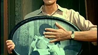 Schulfilm-DVD: DIE LEGENDE VON PAUL UND PAULA (Vorschau)