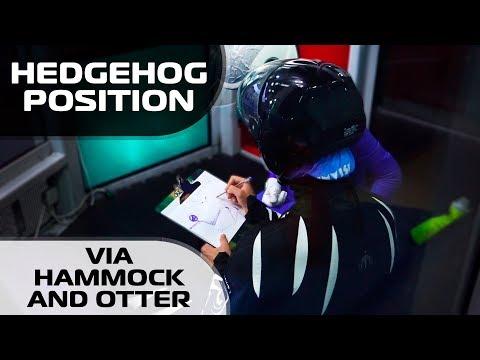 Training Hedgehog position via Hammock and Otter poses (Leo & Tea)