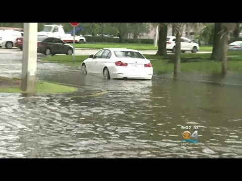 Flooding Puts Parts Of Davie, Plantation Under Water