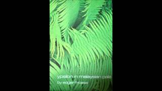 Edgar Froese-ypsilon in malaysian pale(Japanese reversal recorded version)