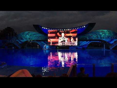 Shamu Light Up The Night at SeaWorld Orlando 2017 FULL SHOW