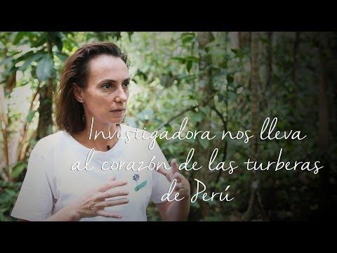 Investigadora nos lleva al corazón de las turberas de Perú