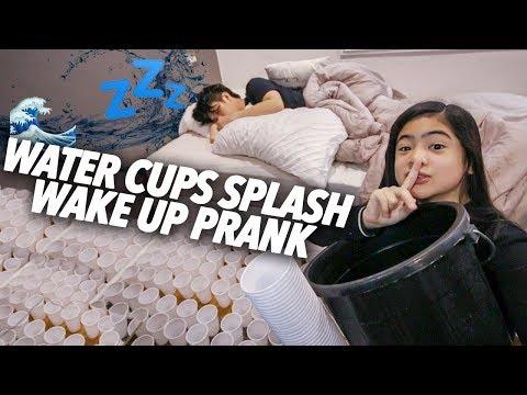 Water Cups Splash