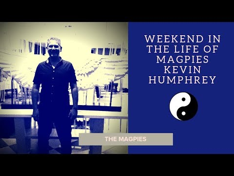 Weekend in the life of Magpies...