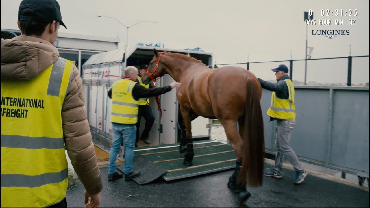 flying-my-horse-across-the-world-episode-3-chasing-the-dream