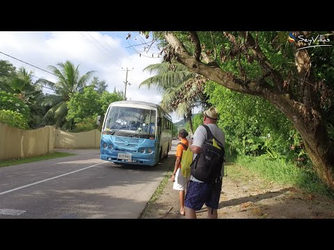 Buses on Mahé