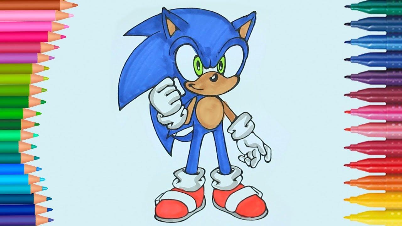 Kirpi Sonic Boyama Kitabı Boyama Videoları Renkleri