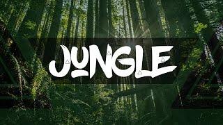 Instru Type PNL / Djadja & Dinaz / DTF - Jungle (RJacksProdz & MastaExplicit)