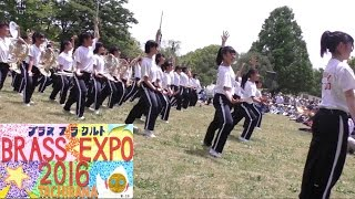 マーチングバンド 京都橘高校吹奏楽部 第30回「ブラスエキスポ2016」 Sing Sing Sing 日本万博記念公園