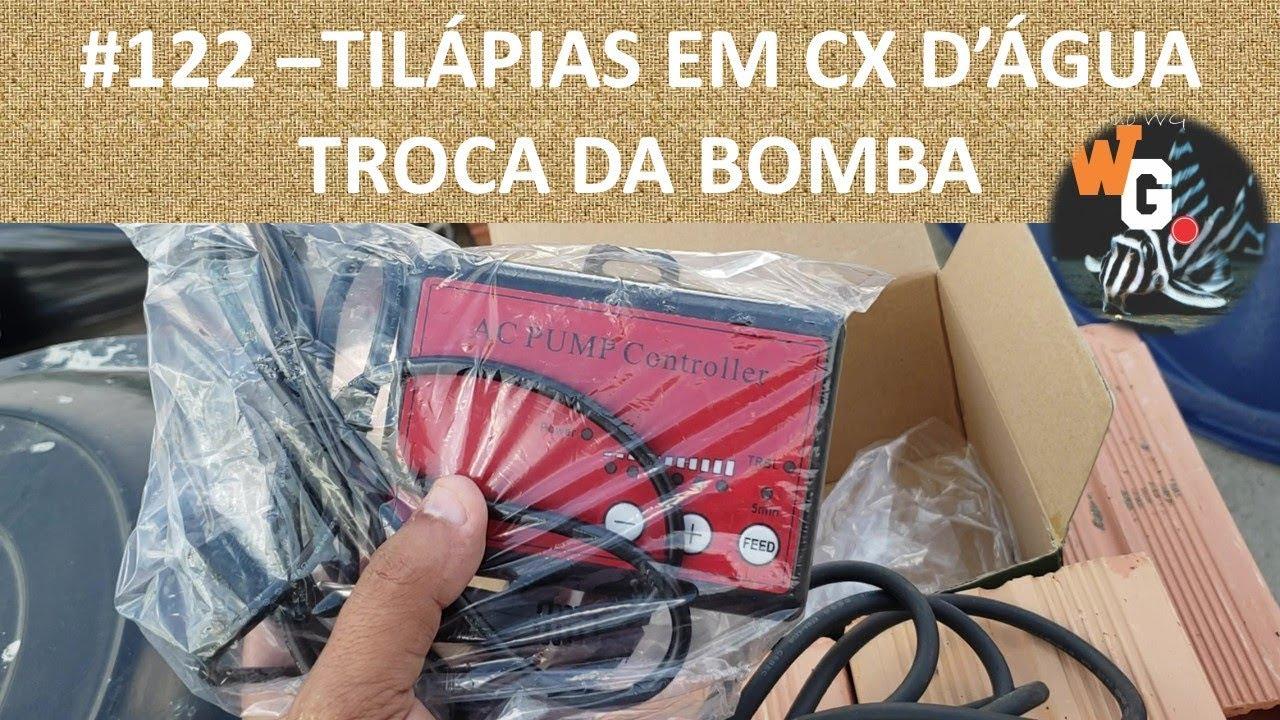 Criação de Tilápias em Caixa D'Água - Troca da Bomba - EP004 - #122
