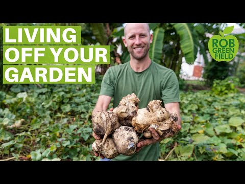13+ Survival Gardening Crops To Grow To Live Off Your Garden