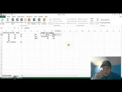 excel project essay