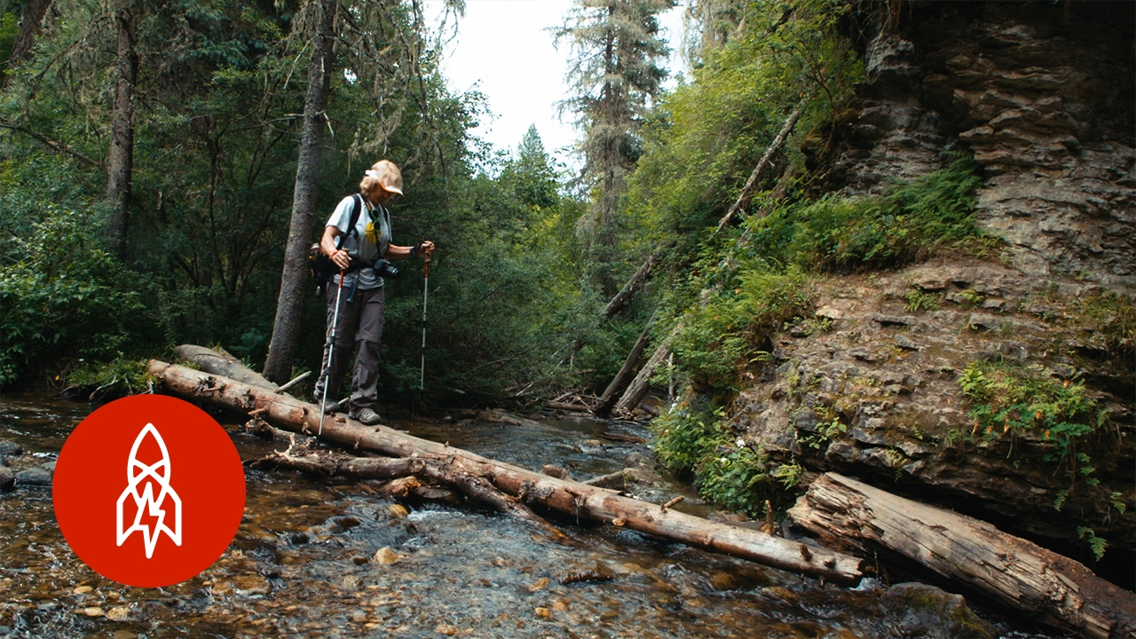 Montana Sheriff Warns Treasure Hunters of Deadly Consequences