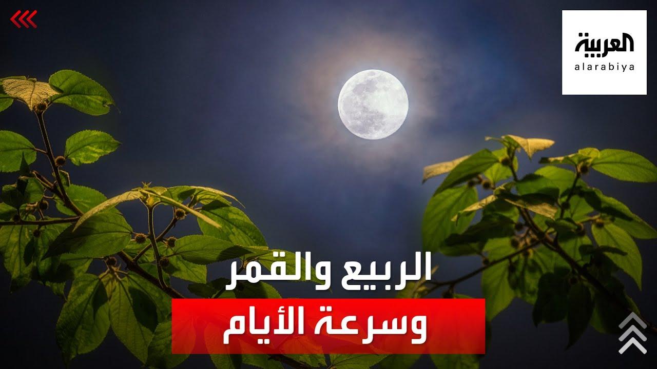 ما علاقة الربيع والقمر وسرعة مرور الأيام؟