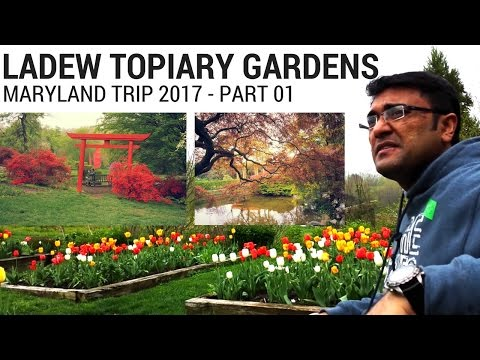 Ladew Topiary Garden | Life, Travel & Fellowship | Benson Thomas