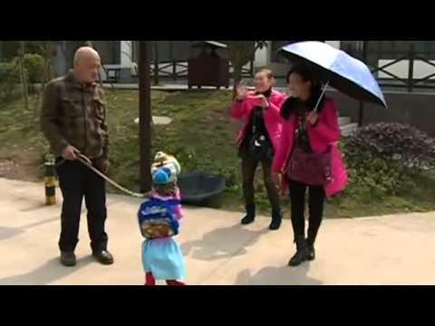 China: Dog walks on hind legs dressed as a schoolgirl