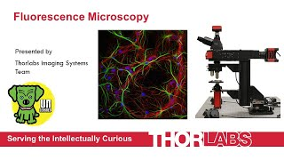 Fluorescence Microscopy: Technology, Fundamentals, and Applications