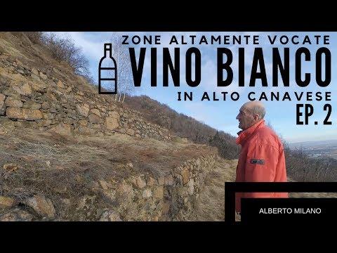 Zone ALTAMENTE vocate per la VITICOLTURA [ EP.2 ] | Alberto Milano
