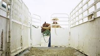 Schaefer Ranch Life - A Day In The Life of the Cowboy