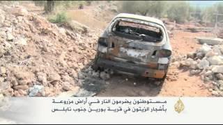 فيديو.. مستوطنون يحرقون أراضي الفلاحين بنابلس