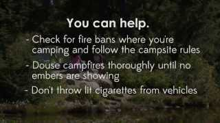 Report wildfires -- help them stop before they start!