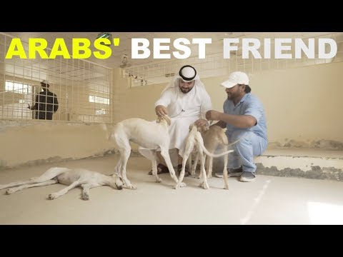 Khalid Song About Friends
