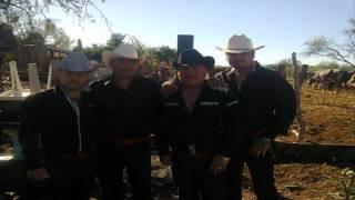 Mi Mas Grande Anhelo - Los Cardenales de Sinaloa 2014