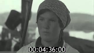 видео Четверть века на страже экологии.