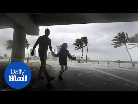 Hurricane Irma: Storm changes path towards St Petersburg - Daily Mail