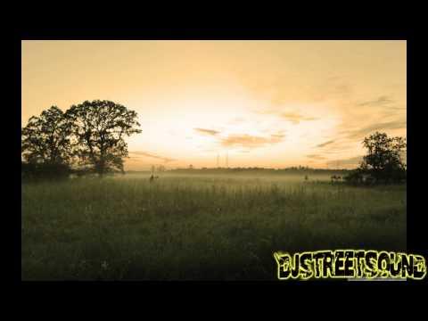 Labrinth feat. Emeli Sande - Beneath Your Beautiful (Naughty Boy Remix)