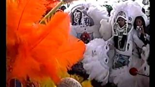 Mardi Gras Indians - Super Sunday I.