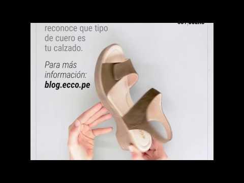 Nobuck Cuero Accesorios Gamuza Kit Pcalzado Incoloro VqUMpjzLSG
