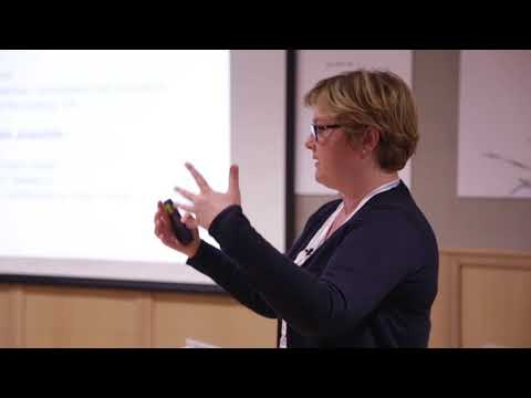 Cohesion indicators: North West Europe Programme - Maria Domzal