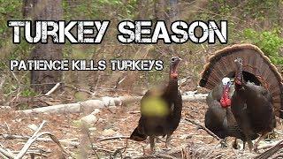 Late Season Turkey Hunting Success.