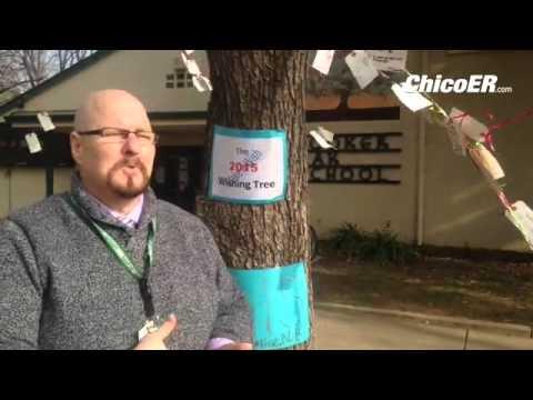 Hooker Oak Elementary School Principal Brian Holderman talks about the wishing tree Wednesday.