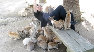 Guy Gets Swarmed by Bunnies on Rabbit Island!