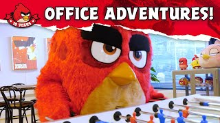 Angry Birds Timeline | Office Adventures!