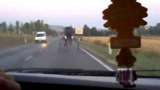 il cavallo piu veloce della storia del trotto
