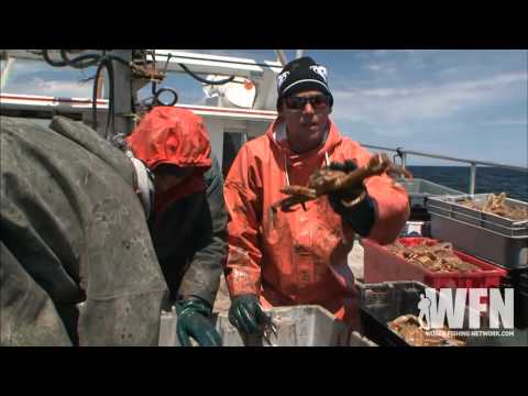 Jobs In The Crabbing Industry