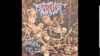 Enthrallment - Burning Fields (Full EP)