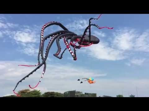 Гигантский Воздушный Змей. Amazing Giant Octopus Kite.