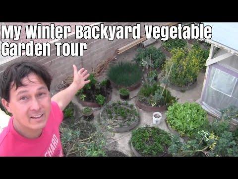 Winter Backyard Raised Bed Vegetable Garden Tour & How I Use My Harvest