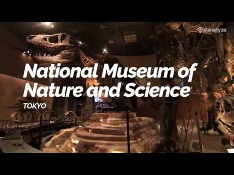 National Museum of Nature and Science, Tokyo | Japan Travel Guide