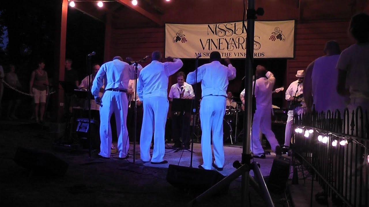 Vinyl Groov Band Youtube