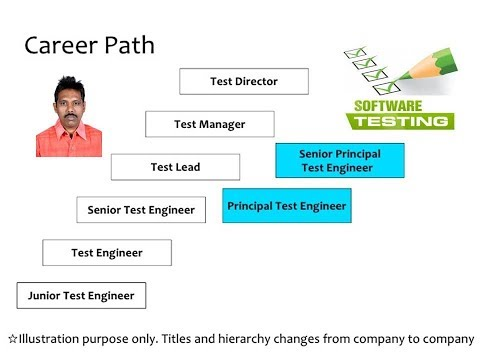 Software Testing Job Structure
