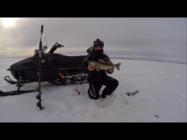 Ловля судака зимой на рыбинке видео - Про рыбалку