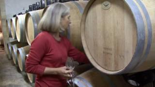 Pomerol Château Gombaude-Guillot / Bordeaux - vin bio