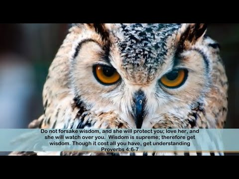 Bible Verses & Quotes About Wisdom - YouTube