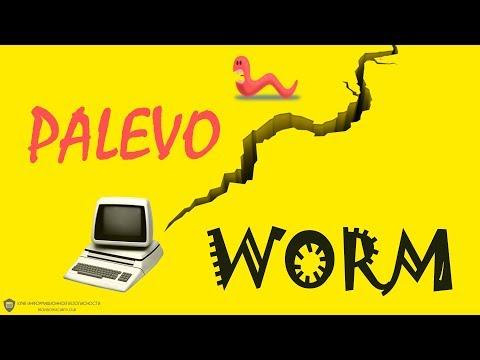P2P-Worm.Win32.Palevo: что такое черви и почему не стоит забывать о старых вирусах