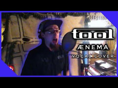 Tool - Ænima - Vocal Cover